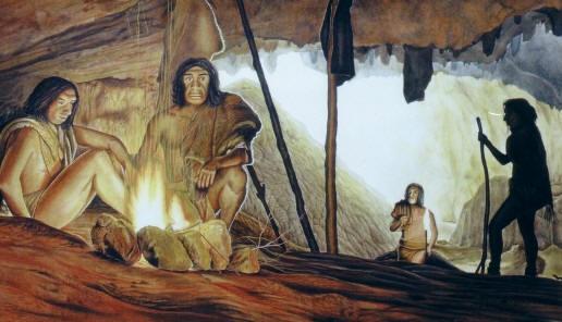 О целебных свойствах ромашки и тысячелистника знали ещё неандертальцы.