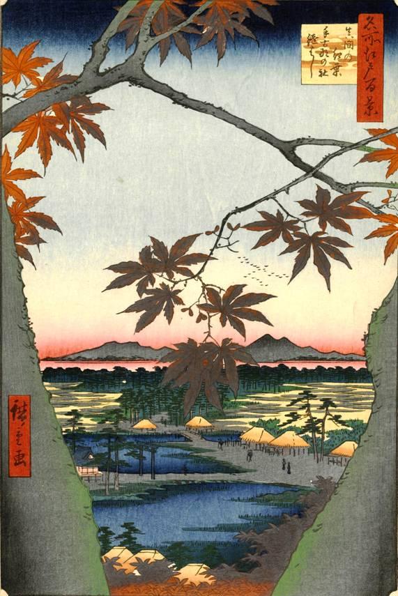 Кленовое дерево. Японская графика