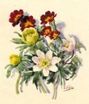 Рисунки княгини Ольги Александровны